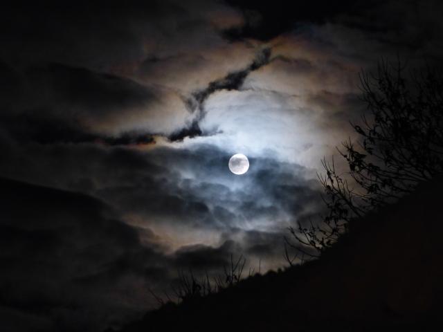 月夜雲がかかる