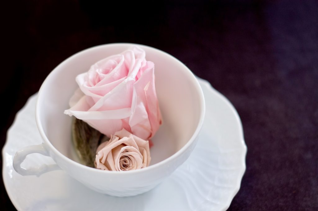 cup-and-roses