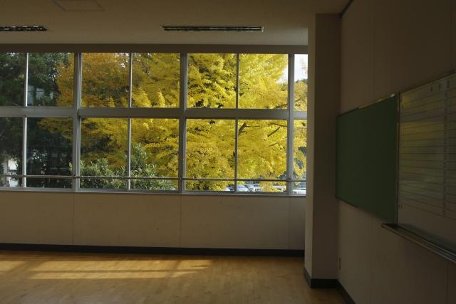 イチョウの見える窓