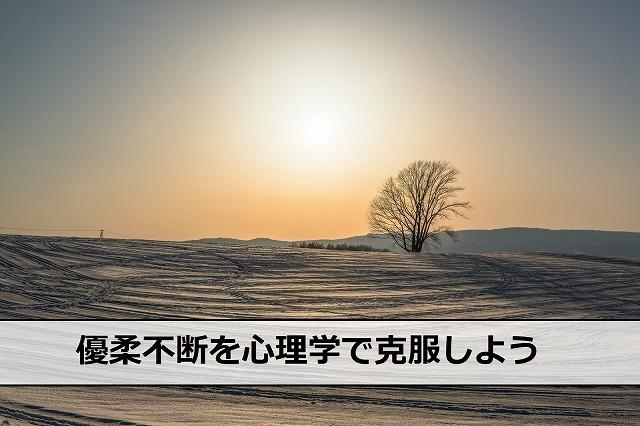 北海道美瑛の雪景色